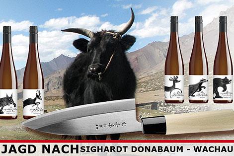 Sighardt Donabaum Weine